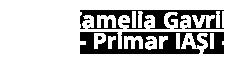 logo_camelia_gavrila_iasi